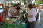 local produce, market day Schladming