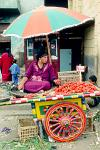 woman selling tomatoes at the Khan al Khalili