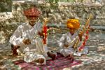 traditional Rajasthani musicians