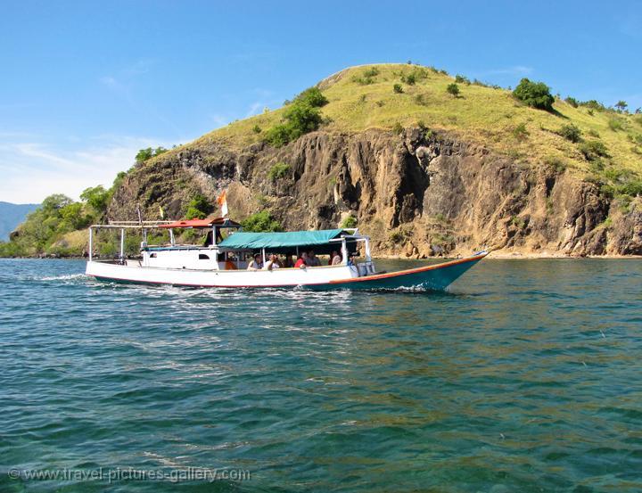 Pictures Of Indonesia Flores 0057 Pulau Kalong Bat