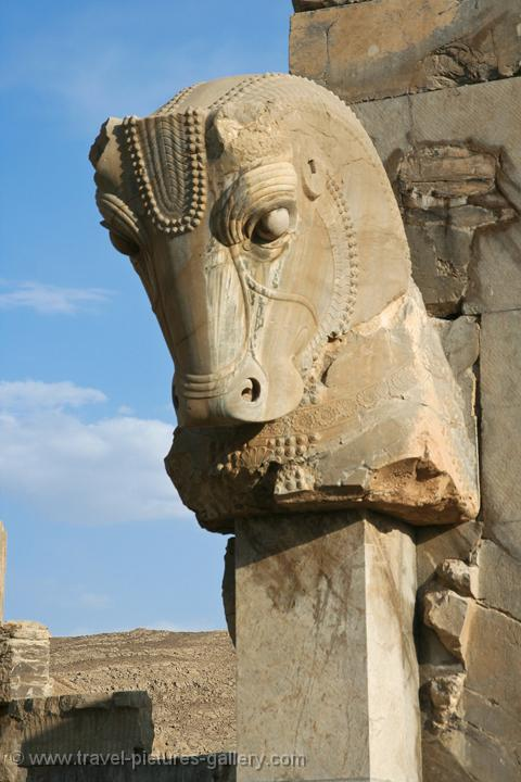 Pictures Of Iran Persepolis 0008 Statue Of A Horse