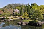Koko-en garden lies next to the castle