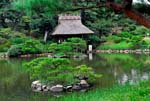 Shukkeien, a traditional Japanese garden