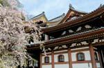 Pictures of Japan - Kamakura - Hase-dera, Hase Kannon temple