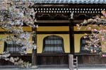 Pictures of Japan - Kyoto -  spring blossom at the Nanzen-ji Temple