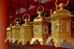 lanterns at the Kasuga Taisha Shrine