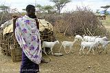 Masai with a herd of goats, Samburu N.P.