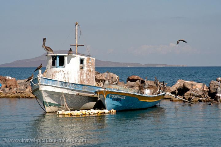 Pictures of mexico baja califonia 0013 fishing boat for Baja california fishing
