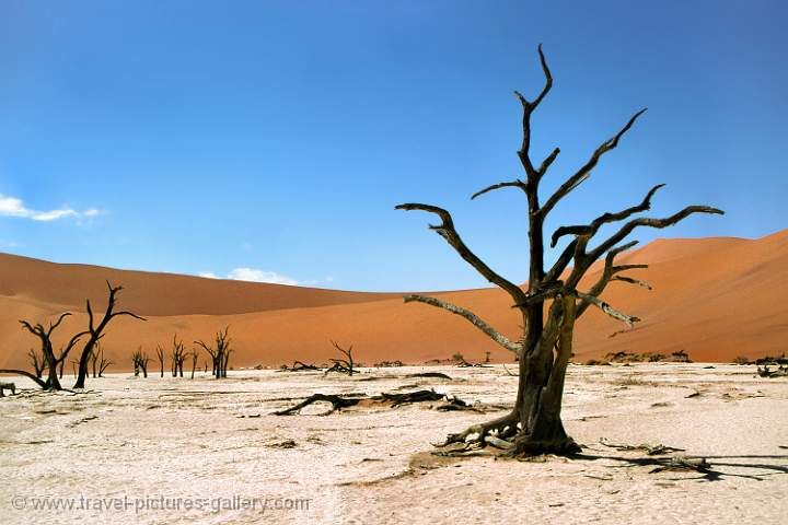Namib Naukluft Desert National Park