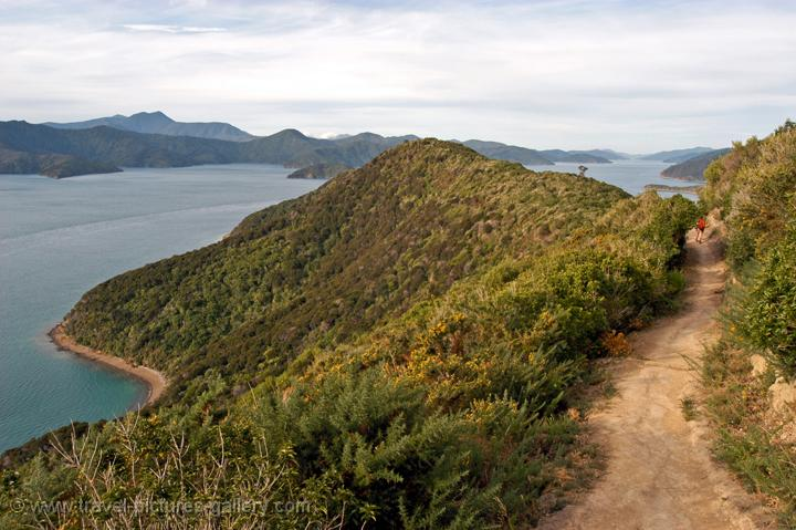 walk along the Queen Charlotte Sound