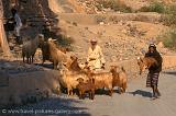 men herding goats