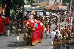 elephant procession, festival of the tooth