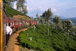 on the train from Kandy to Nuwara Eliya