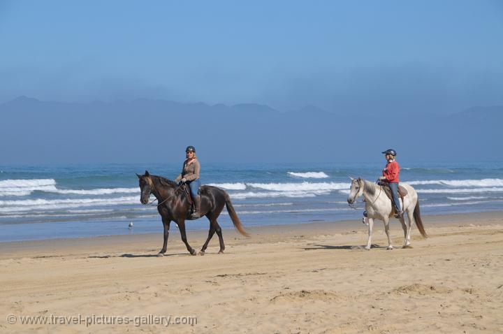 Horse Riding At Pismo Beach