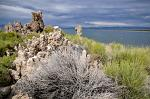 Tufa towers and flora on the lakeside