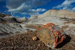 Arizona - Petrified Forest National Park