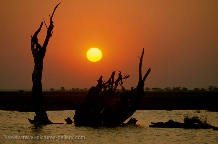 Chobe River sunset, Botswana