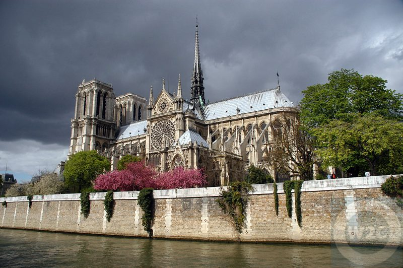 France - Paris -Notre Dame Cathedral